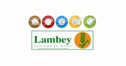 Lambey nutrition